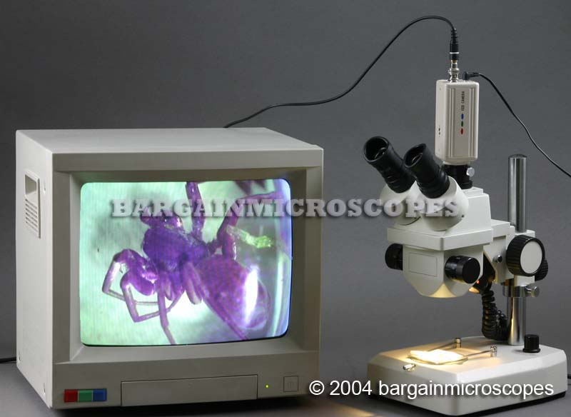 7x - 70x Zoom Stereo Trinoc Pole Mounted Microscope W/ CCD Live Video Camera W/ USB Digital Camera Bonus Travel Case