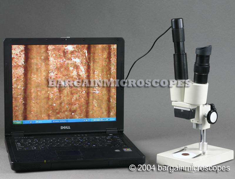 20X - 40X LOW POWER DISSECTION - STEREOSCOPIC BINOCULAR MICROSCOPE w/ DIGITAL JPG IMAGE CAMERA
