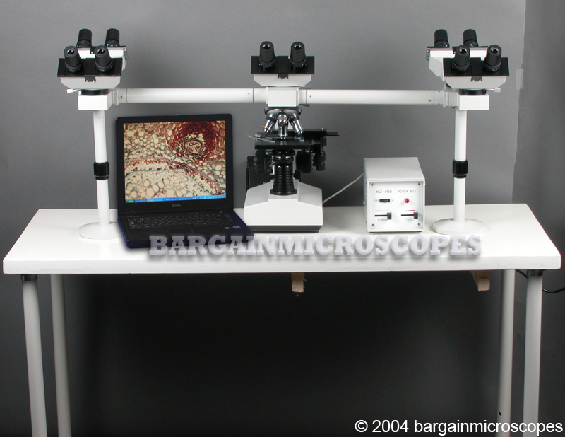 Five Head Teaching Microscope Multiple Simultaneous Viewing 40x - 1000x High Power Compound Trinocular Photo Port 3MPIXEL Image USB Camera